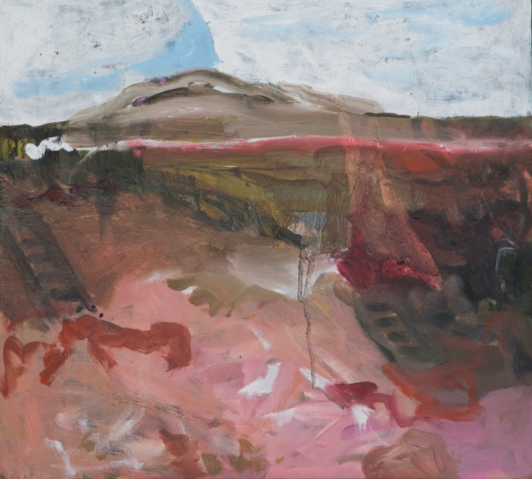 JOANNA COLE Wide Brown Land with Movie Star Pinks 2018 Oil on Board 50x45 $650